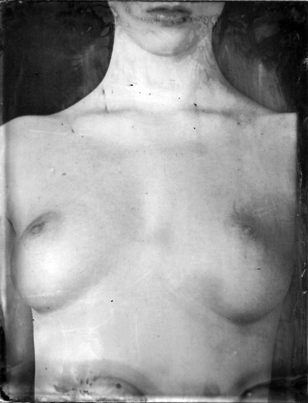 Renata Vogl scanned original ferrotype breast original size 13x10 cm