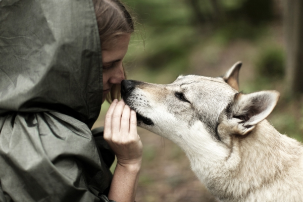 renata vogl women who run with the wolves_No.2