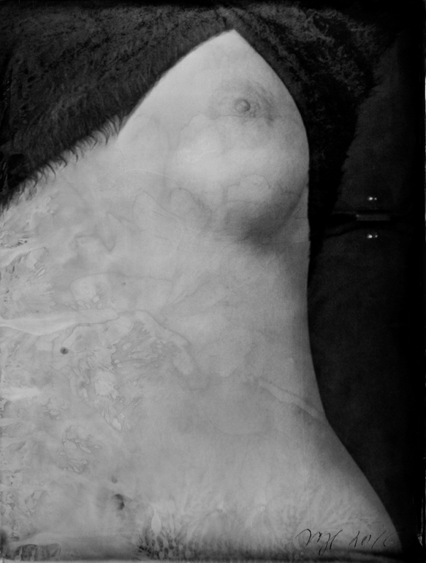 renata vogl scanned original ferrotype, body, original size 13x10 cm